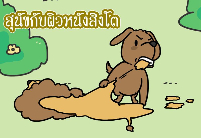 นิทานอีสป สุนัขกับผิวหนังสิงโต