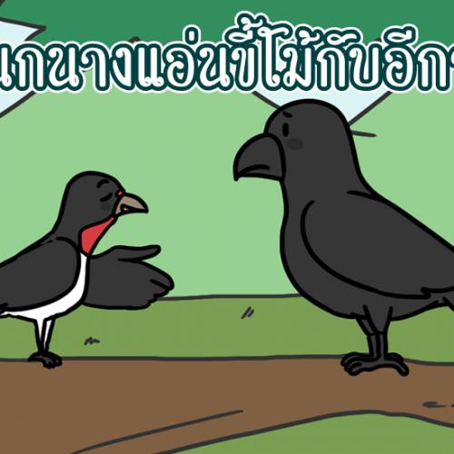 นิทานอีสป นกนางแอ่นขี้โม้กับอีกา