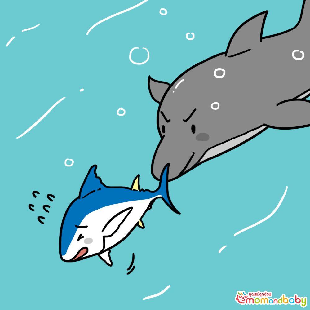เสียงของปลาทูน่าที่กำลังว่ายน้ำหนีโลมาอย่างหมดหวัง