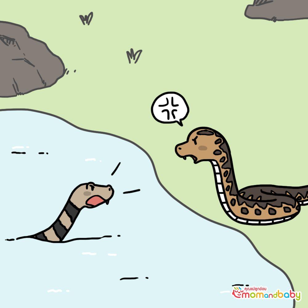 งูน้ำที่อาศัยอยู่ในฤดูใบไม้ผลิไม่พอใจ