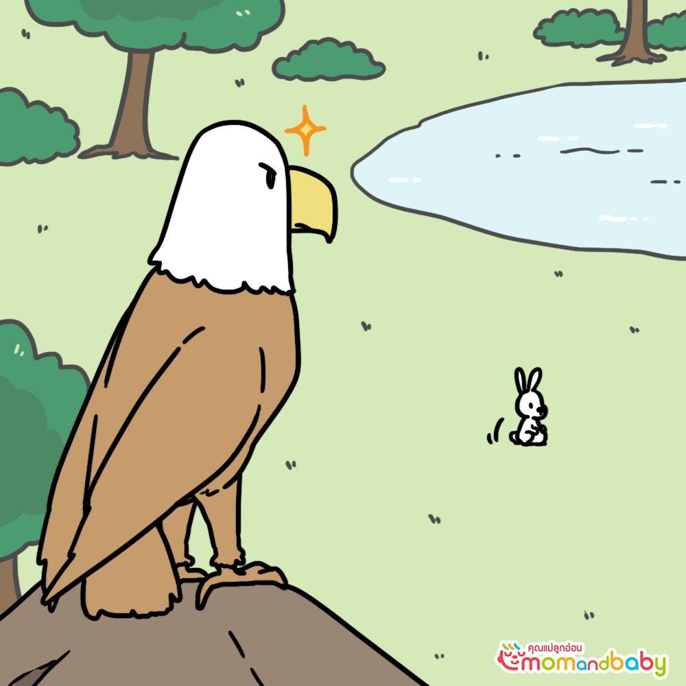 นกอินทรีตัวหนึ่งนั่งอยู่บนก้อนหินและมันกำลังเล็งกระต่ายอยู่