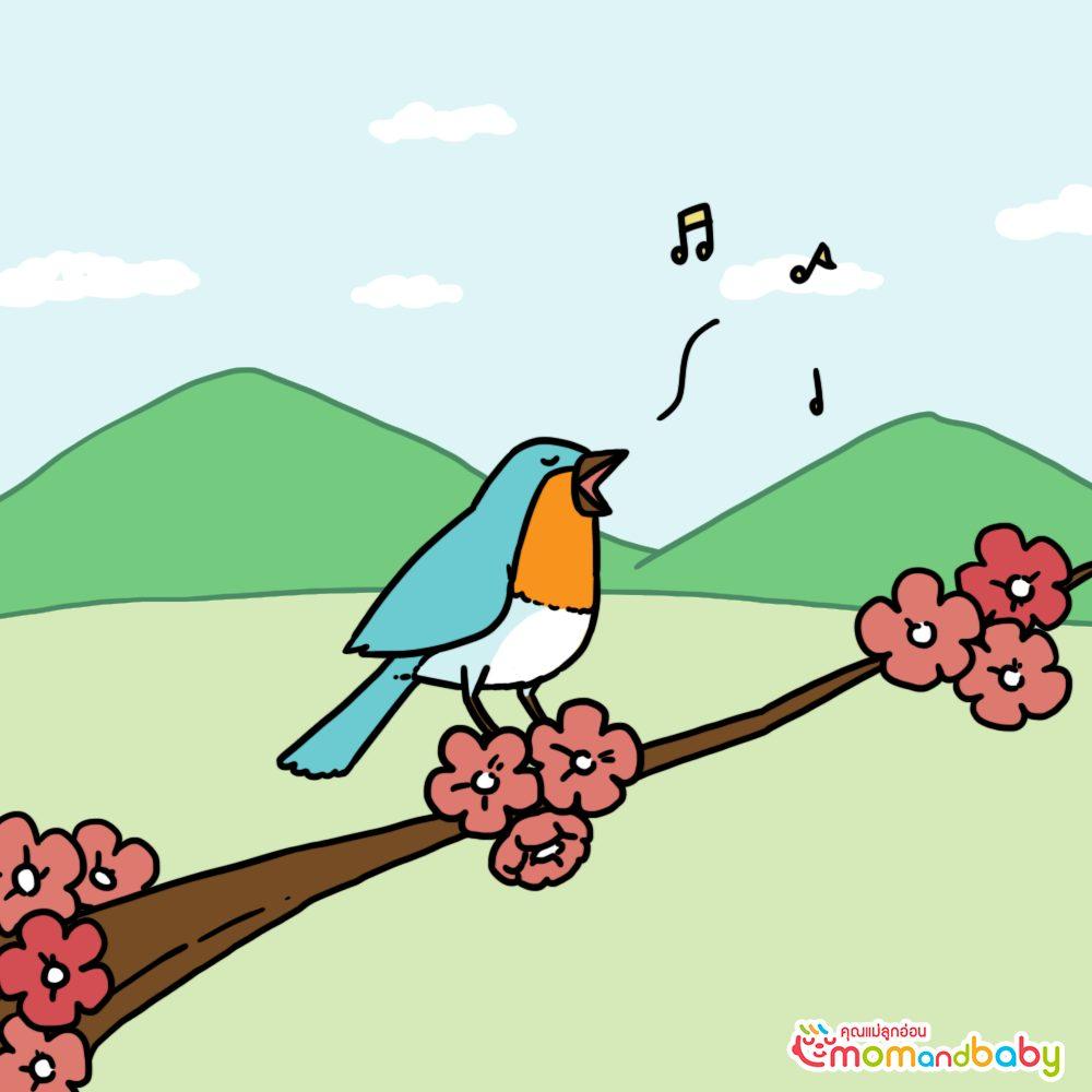 ราชาแห่งนกต้องร้องเพลงเก่ง