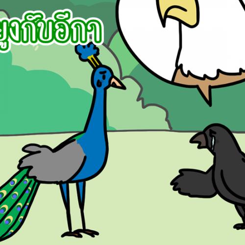 นกยูงกับอีกา