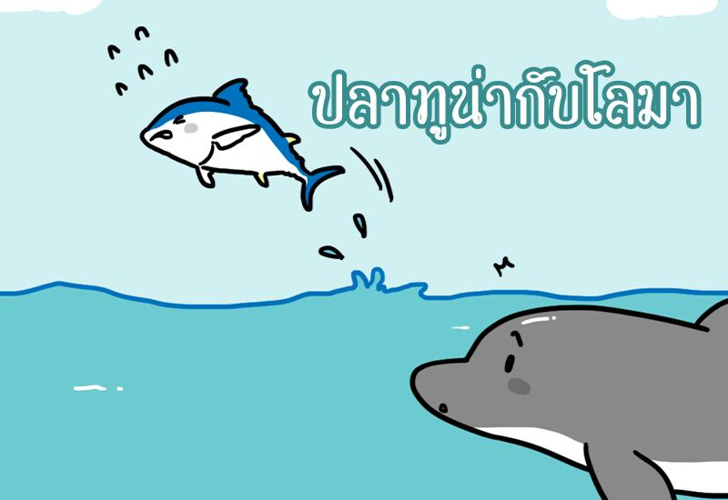 ปลาทูน่ากับโลมา