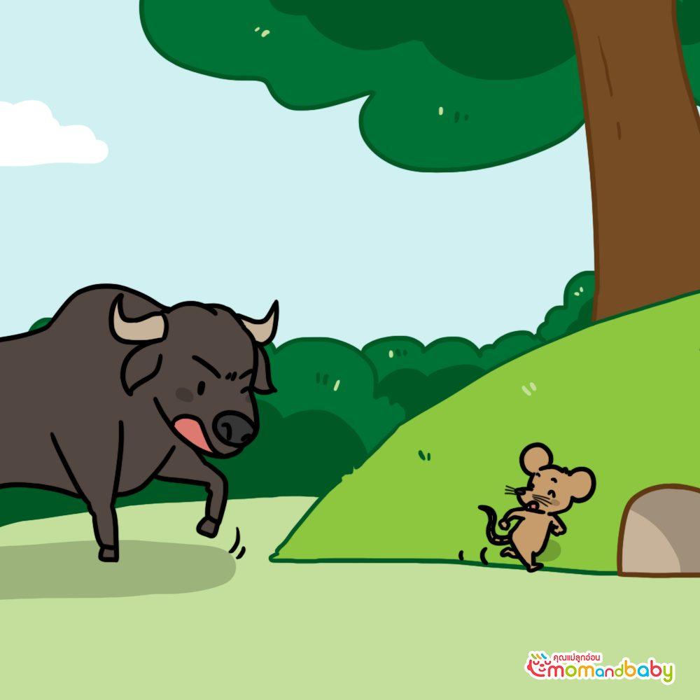 เจ้าวัวกระทิงโกรธเมื่อหนูกัดเขา เขาจึงพยายามจับหนู