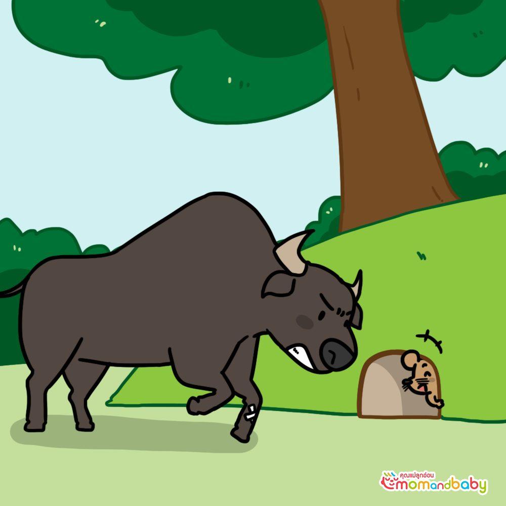 อย่างไรก็ตามหนูตัวนี้ได้พยายามหลบวัวที่กำลังโจมตีโดยการซ่อนตัวอยู่ในหลุม