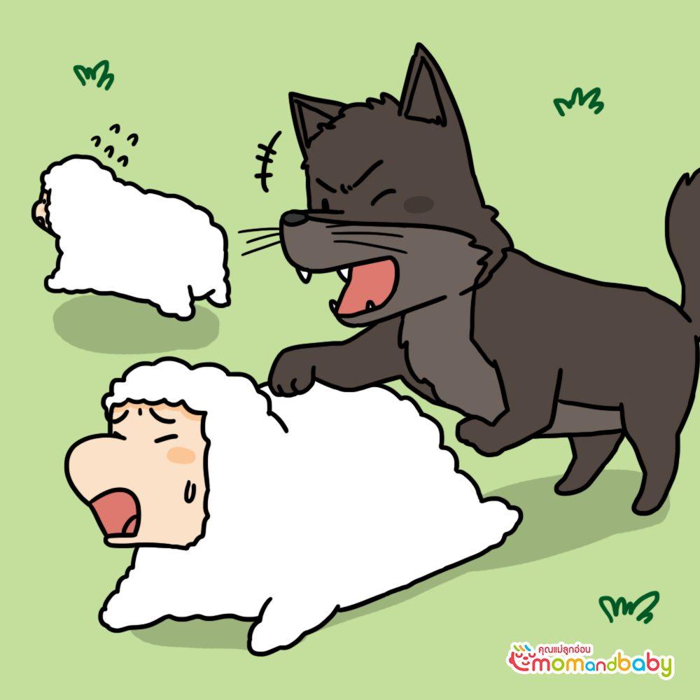 พวกหมาป่ามักโจมตีแกะของเด็กชายทุกครั้งเมื่อมีโอกาส